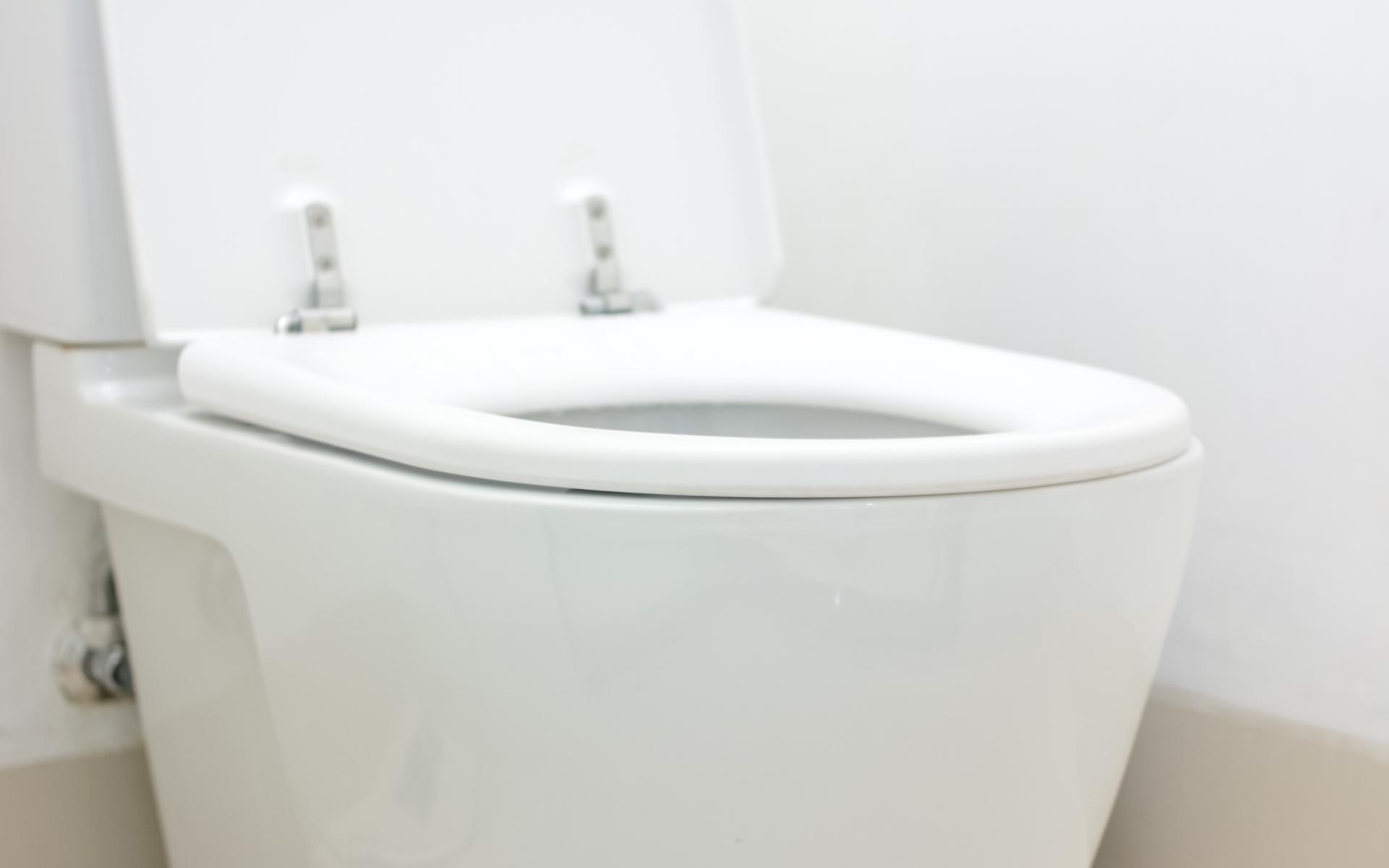 Fort Worth Toilet Repair